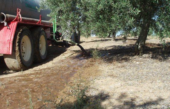 通过橄榄农场,对榨油厂的废液进行管理