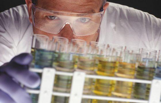 摄入特级初榨橄榄油对妊娠糖尿病的影响